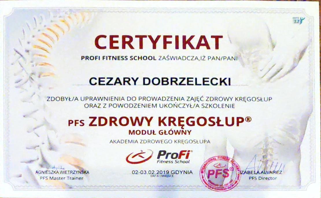 Profi Fitness School szkolenie Zdrowy kręgosłup certyfikat